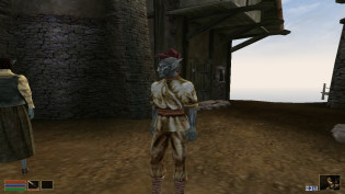 Re)installing Morrowind, Pt  2 » Life In Ink and Pixels