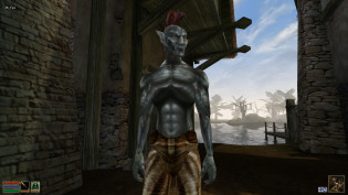 Morrowind mature mod